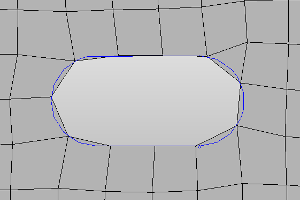 Mesh result of HyperMesh